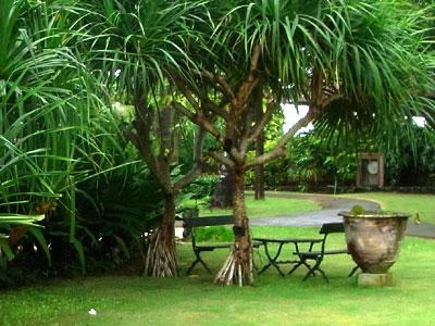 お庭のベンチ